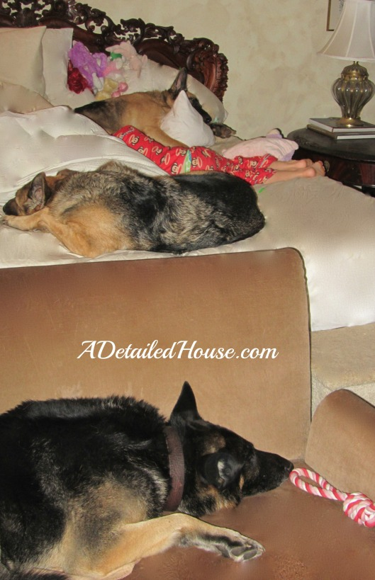 ADH012413DogsBed